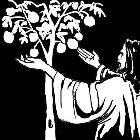 15 Sun./ Ord. A: That the Word of God may bear fruit in one's life
